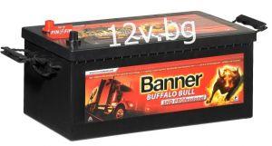 Акумулатор Banner Buffalo Bull SHD PROfessional 12/180 Аh L+